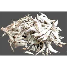 feuilles de sauges blanche en vrac