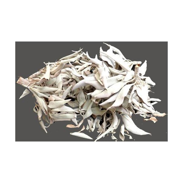 Sachet de feuilles de sauge blanche séchée 25 g