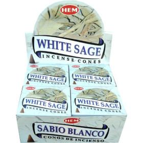 Weihrauchkegel Saum weißer Salbei