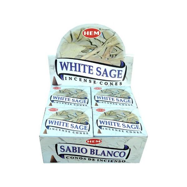 Cônes hem sauge blanche