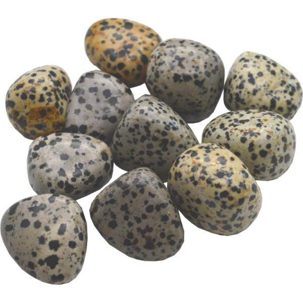 Dalmatinischer Jaspis