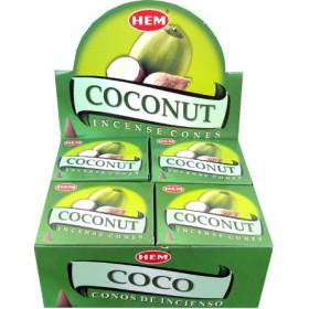 Kokosnuss-Saumkegel-Weihrauch
