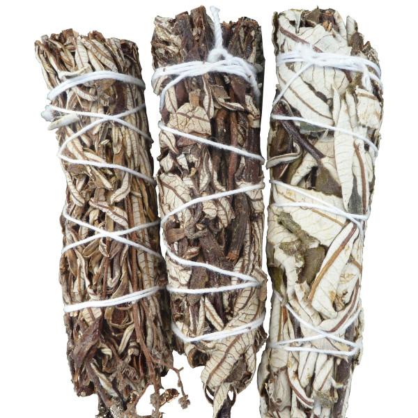Beifuß - Schwarzer Salbei in Bündeln von 30 gr
