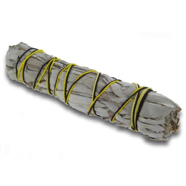 Weißer Salbei in Bündeln von 20 gr
