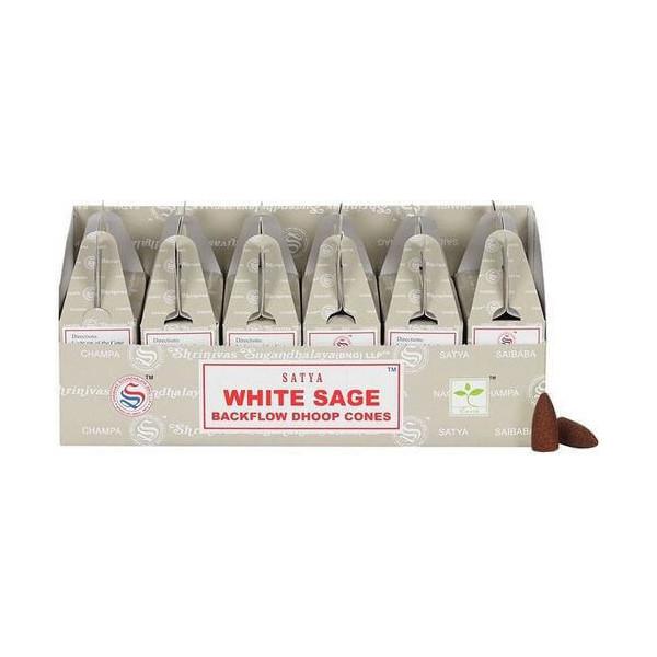 Backflow cônes sauge blanche encens satya lot de 6