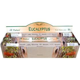 Boite d'encens tulasi eucalyptus 20 gr
